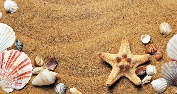 ¡Protege tu piel en la playa!